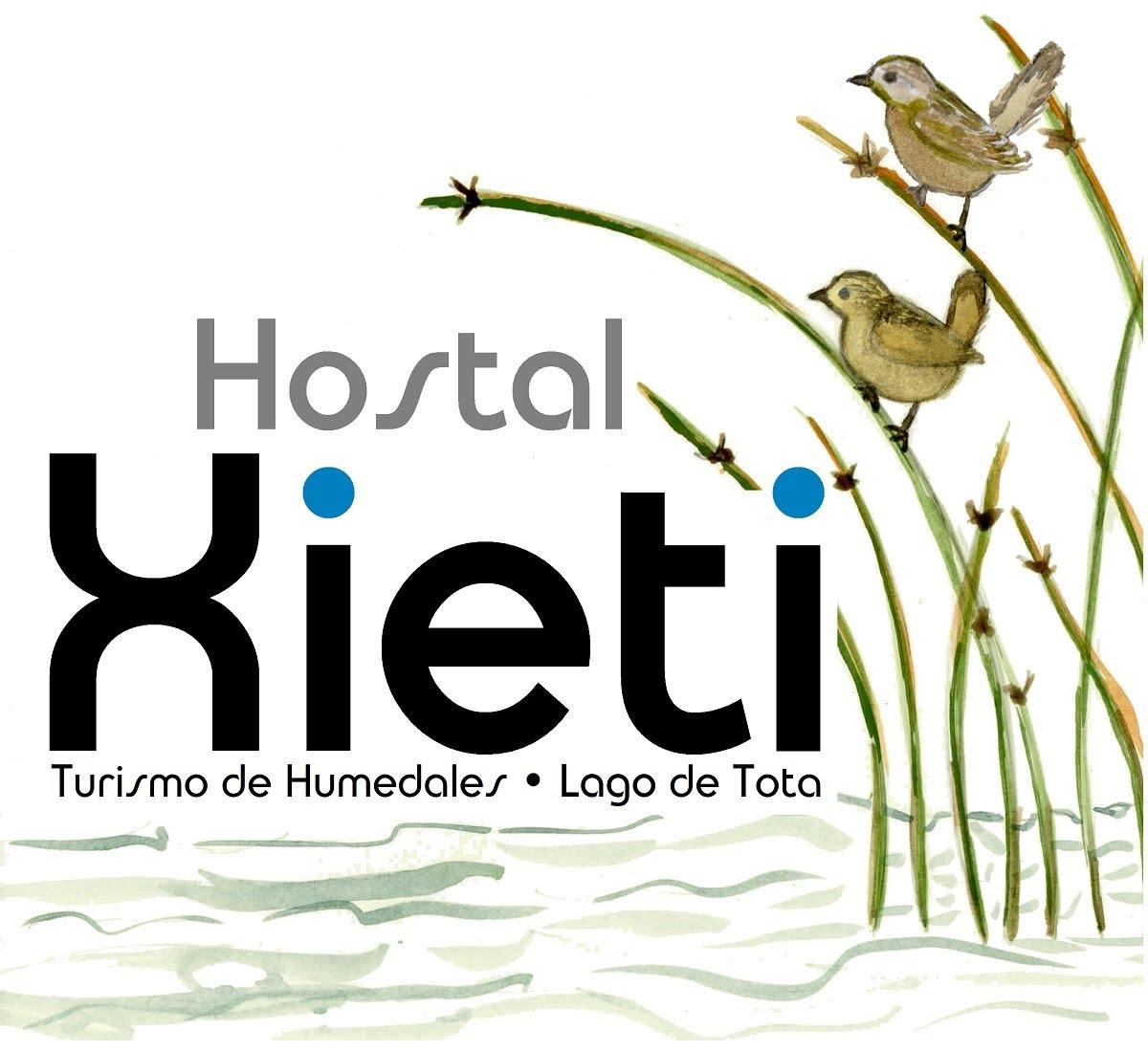 http://xieti.abctota.org/